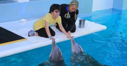 Claudia Dopico meeting dolphins at Clearwater Marine Aquarium