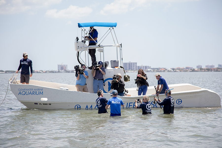Clearwater Marine Aquarium rescue boat