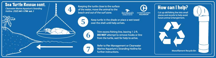 Responsible Pier Initiative Sea Turtle Signage