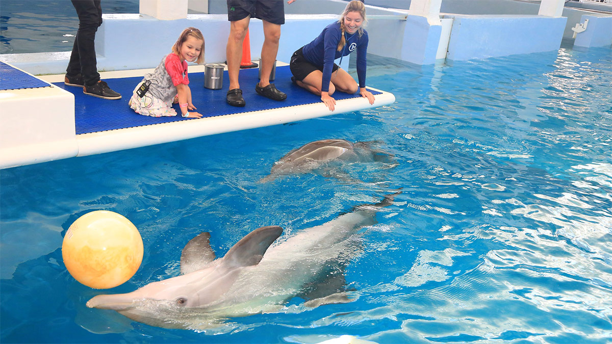 Layla Welch meeting dolphin heroes, winter and hope on platform