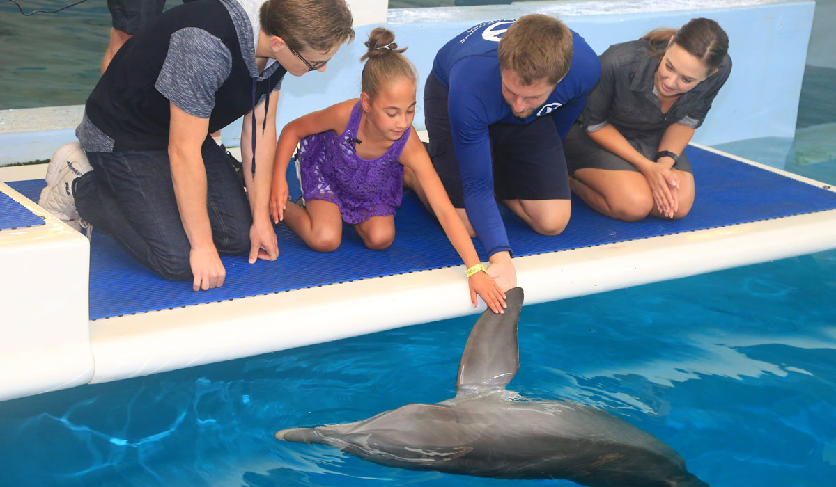 mayra meets dolphin tale actors
