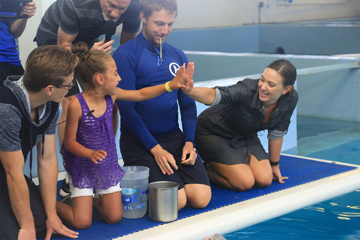 mayra meets dolphin tale stars