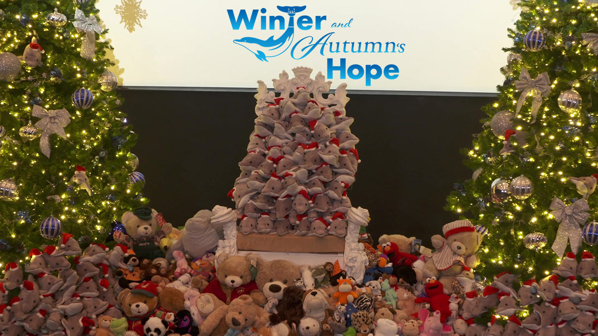 Winter and Autumn's Hope stuffed animal collection