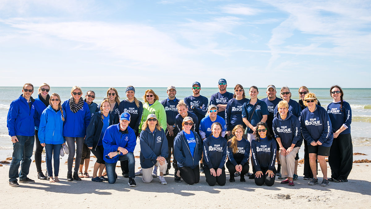 clearwater marine aquarium team staff and volunteers