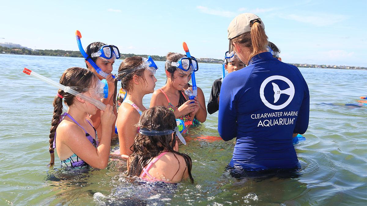snorkel camp