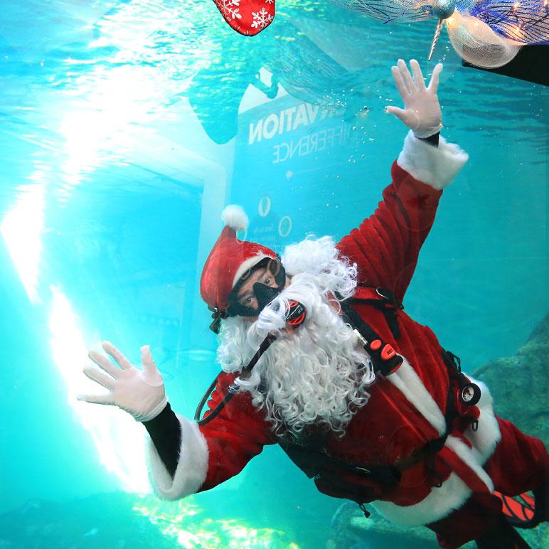 Dive Santa