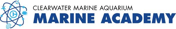 marine academy logo