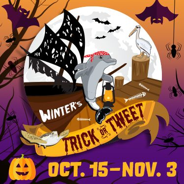 Winter's Trick or Tweet