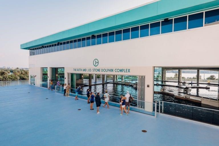 Dolphin Terrace