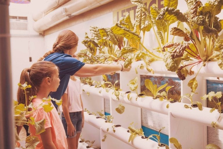 Girls Learning About the Aquaponics