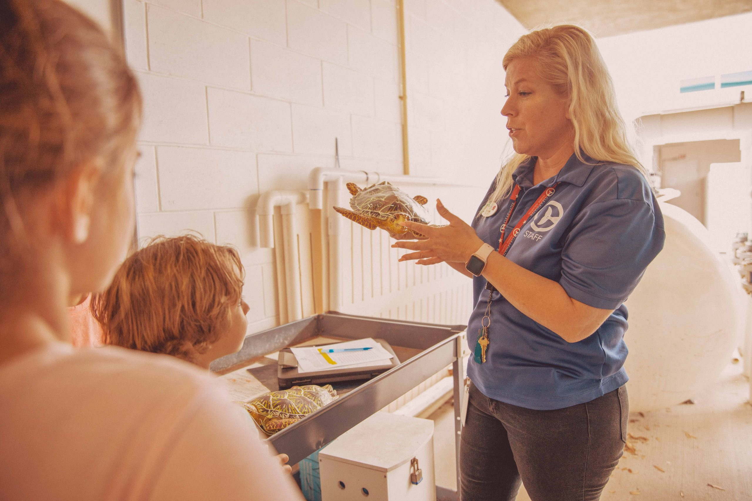 CMA Staff Teaching About Turtles in Behind the Scenes Tour