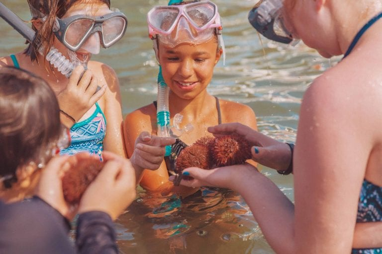 Kids Snorkeling at Clearwater Marine Aquarium Summer Camp
