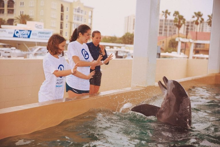 Dolphin Care Assistant Teaching Kids to Interact with Dolphin