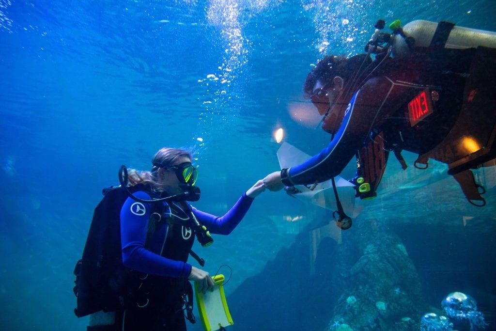 Underwater Diver Proposal