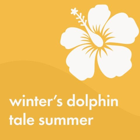 Winter's Dolphin Tale Summer