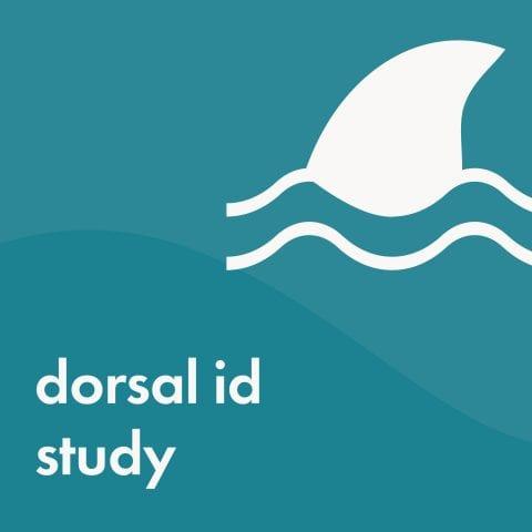 dorsal id study