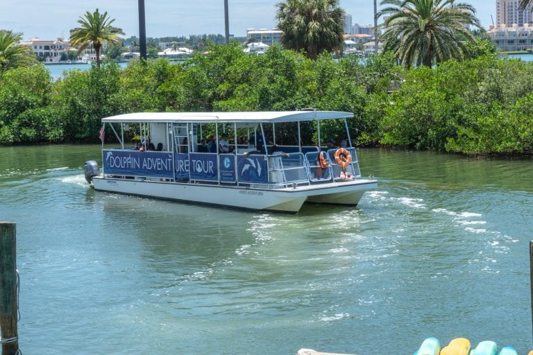 Dolphin and Wildlife Cruise