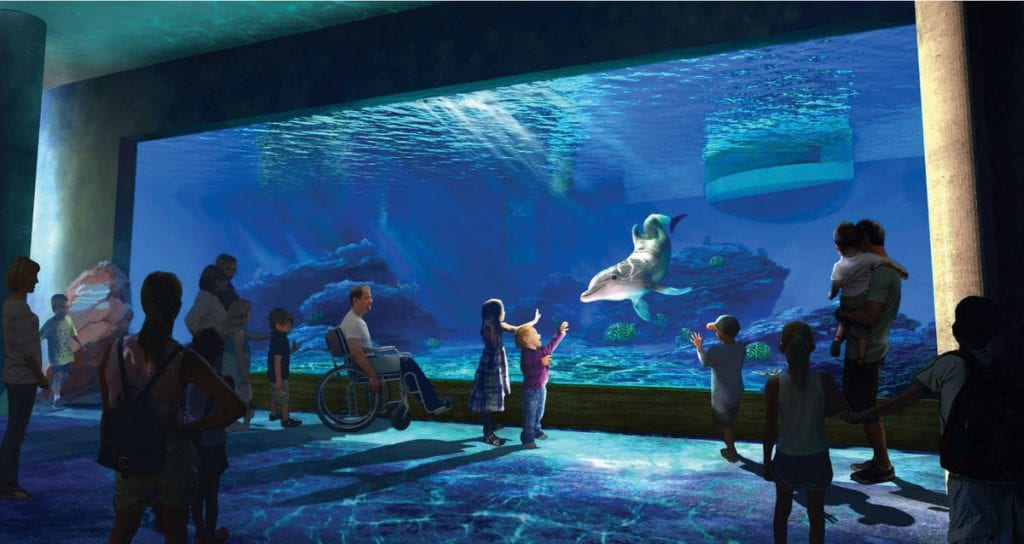 Rendering of new dolphin window