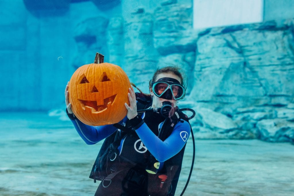 Diver with carved pumpkin