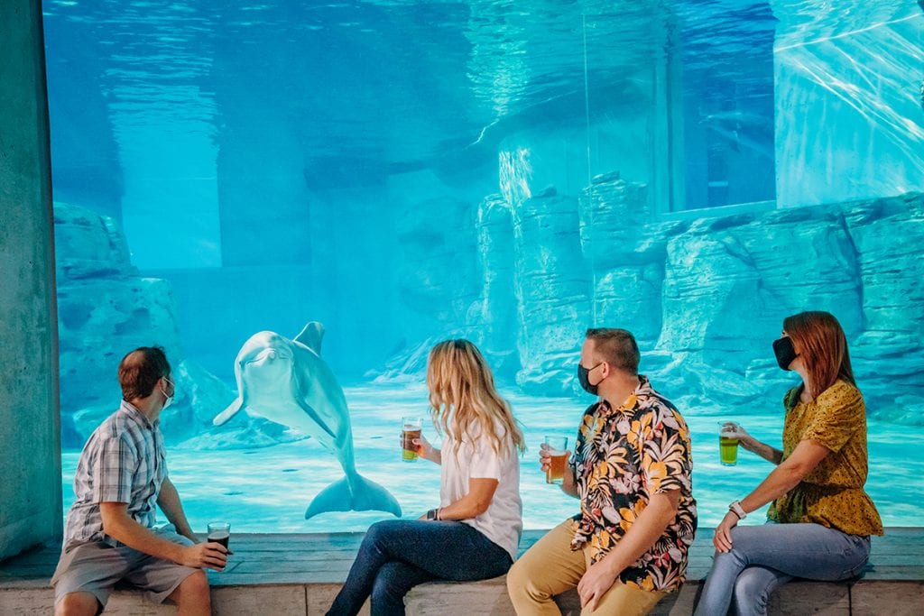 Group sitting with Dolphin