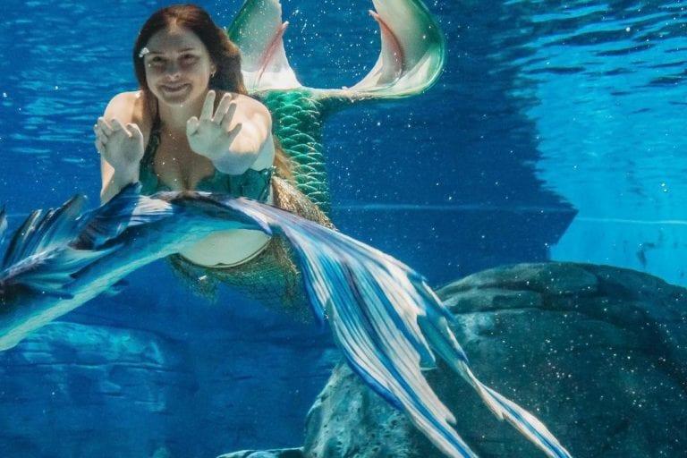 mermaid waving