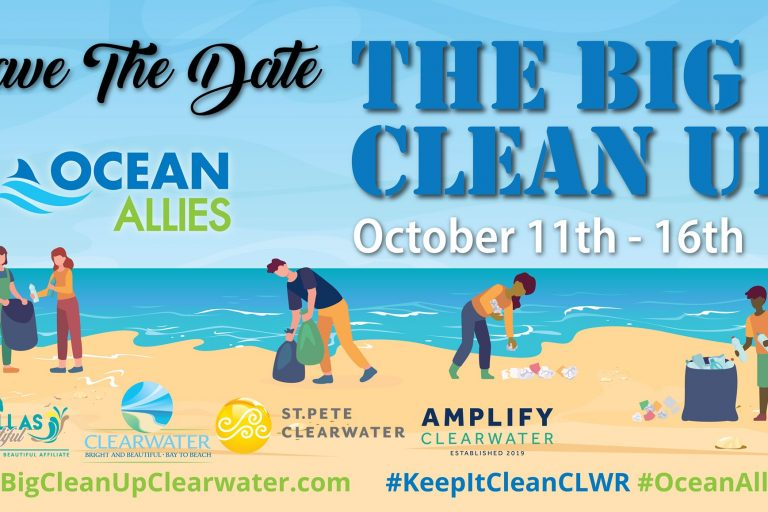big cleanup graphic